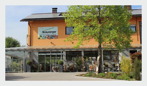 Gartenplanung in  Königsbach-Stein - ,  und