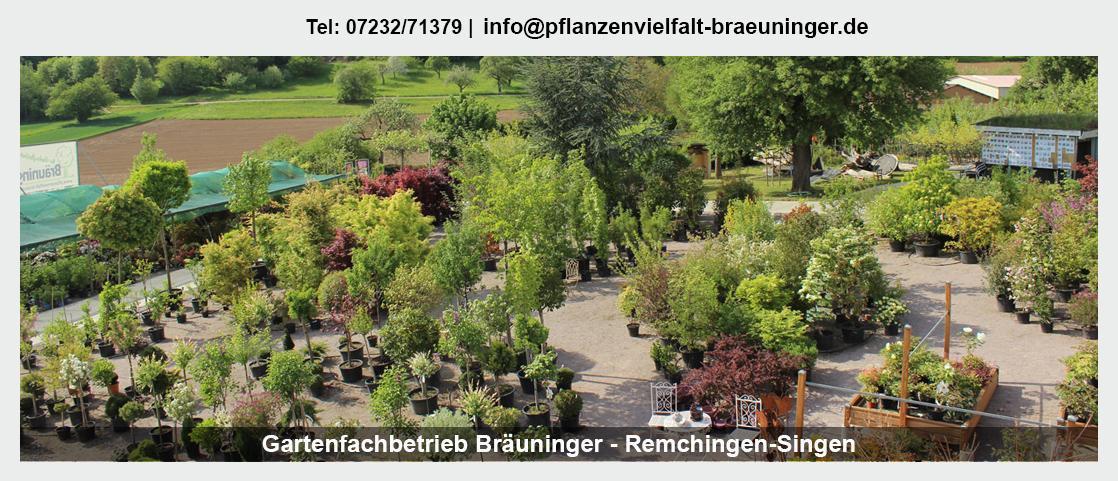 Gartenbau für Birkenfeld - Gartenfachbetrieb Bräuninger: Rollrasen legen, Hecken schneiden, Floristik,