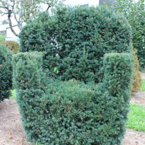 2-2-Taxus-Schwarzgrün-Stuhl